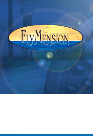Corporate Design: FlyMension